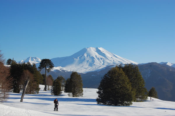 Back country skiing with a view to Corralco ski resort and Lonquimay volcano