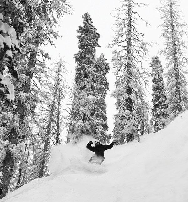Wolf Creek tree skiing