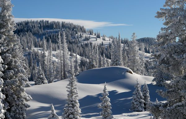 Steamboat glades