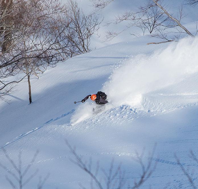 Powder skiing at Tenjindeira