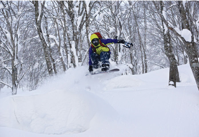 Back country riding in the trees at Iwate, Hakuba
