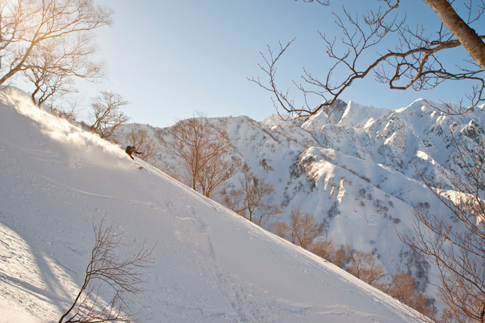Above Goryu there are plenty of steeper Hakuba back country lines