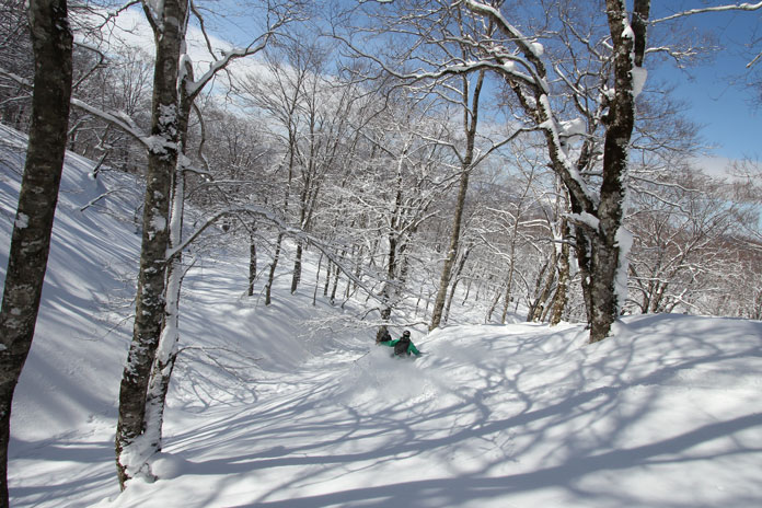 Cat skiing at Tazawako using the JR East Tohoku Pass