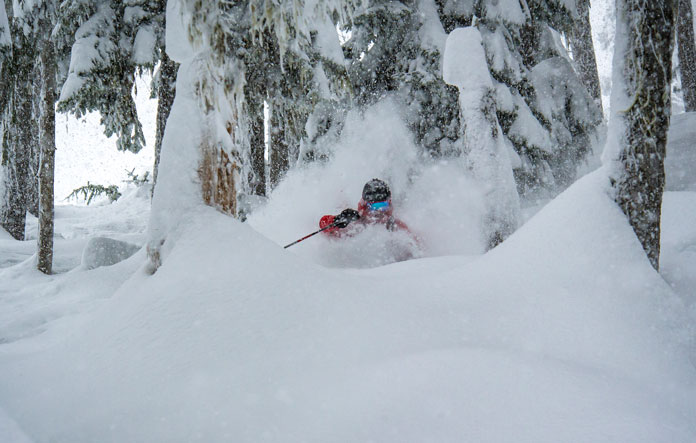 Deep snow tree skiing at Whistler