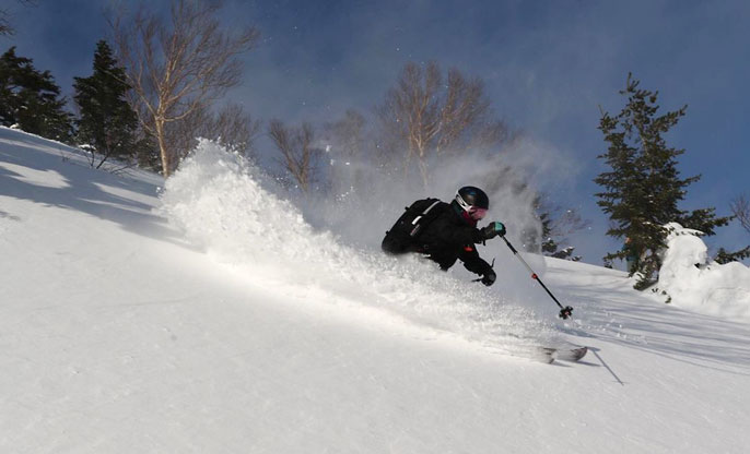 Powder skiing Hachimantai Cat Tours 21/01/2021