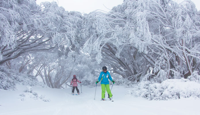 Kids getting the hang of tree skiing at Mt Baw Baw
