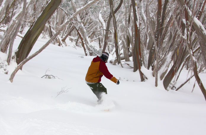 Snowboarding fresh snow in the snowgums at Mt Baw Baw
