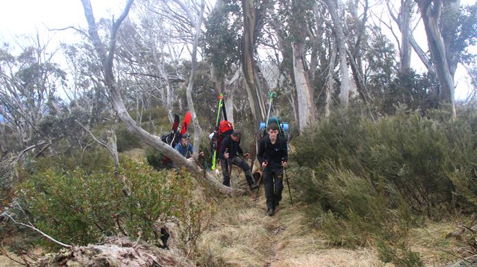 Hiking up Mt Bogong